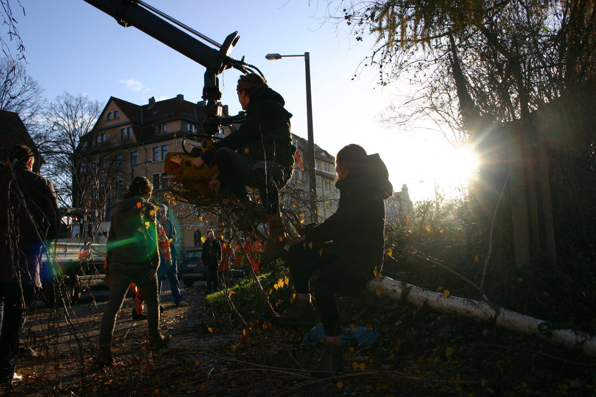Reportage: 2 Tage Räumung des Inselgartens – von Schlägen mit Latten, akuter Lebensgefahr und Holztauziehen