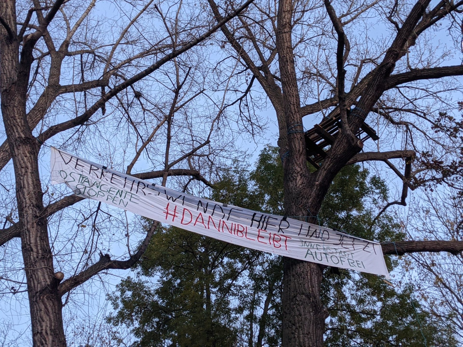 "Baumbesetzung in Jena: ""Alle Dörfer bleiben – Alle Bäume bleiben"""