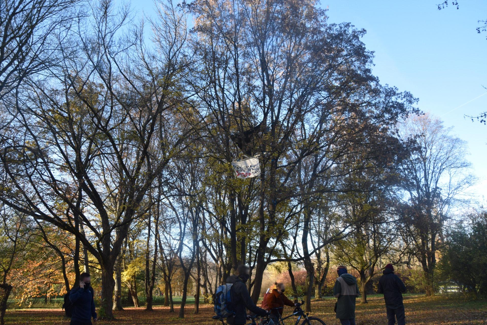 Umweltaktivist*innen errichten Baumhaus im Paradies  – Klimacamp angekündigt